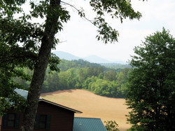 View of the pasture & Mts.