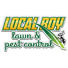 Local Boy Logo.jpg