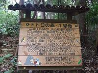 狹山丘陵龍貓森林