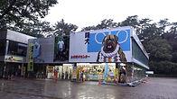 土佐闘犬中心