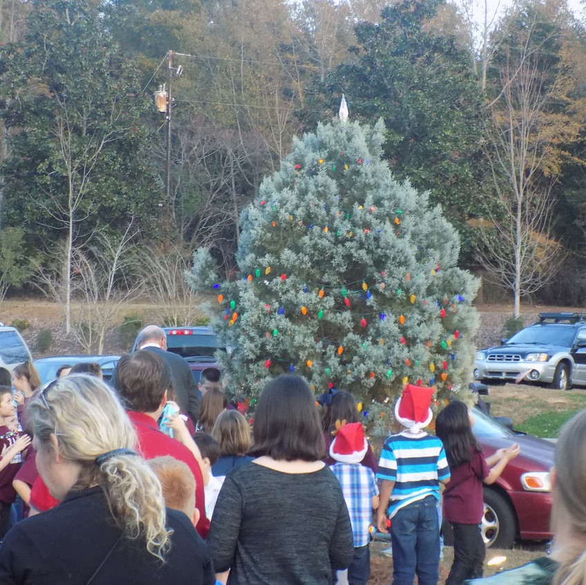 Town of Chapin Tree Lighting
