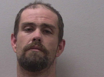 Pelion man charged with murder