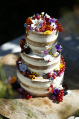 Semi-Naked Cake with edible flowers & fruit