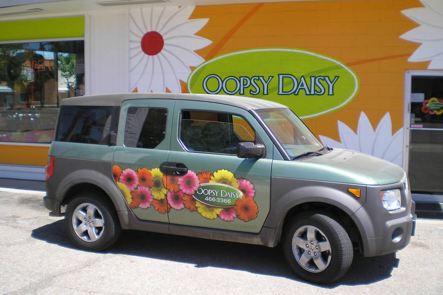 Oopsy+Daisy+Element
