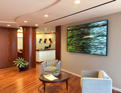 New Media Art in Corporate Lobby