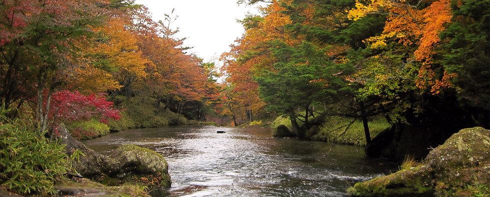 early autumn.jpg
