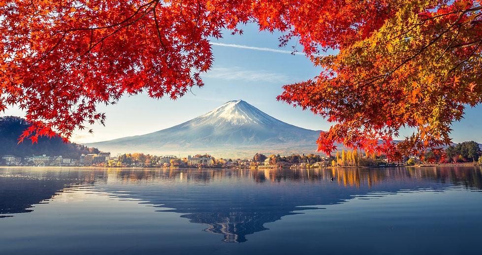 Mt. Fuji in Autumn.jpg