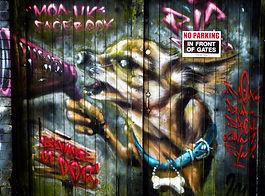 Graffitti in Glastonbury Beware Of Dog