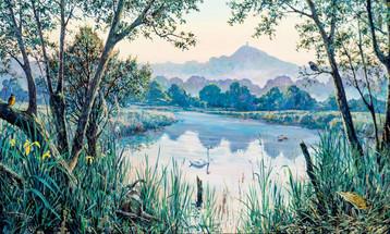 Avalon Marshes by Jon Minshull.