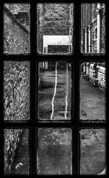 Through the Monochrome Window