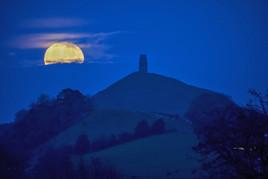 Harvest Halloween 'Blue' Moon