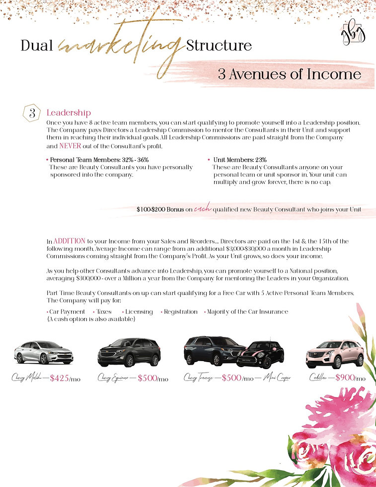 3 Avenues of Income page 2.jpg