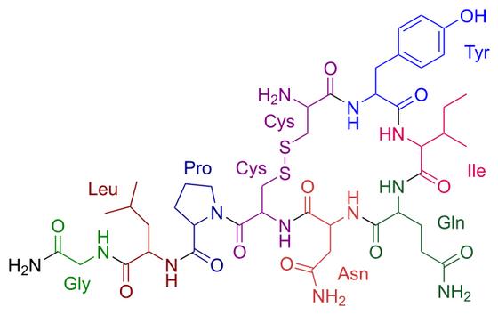 אוקסיטוצין - הורמון האהבה, ההורמון שאוהב חמימות