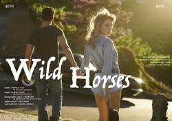 MITH_wild-horses_kelly-serfoss_web01 copy