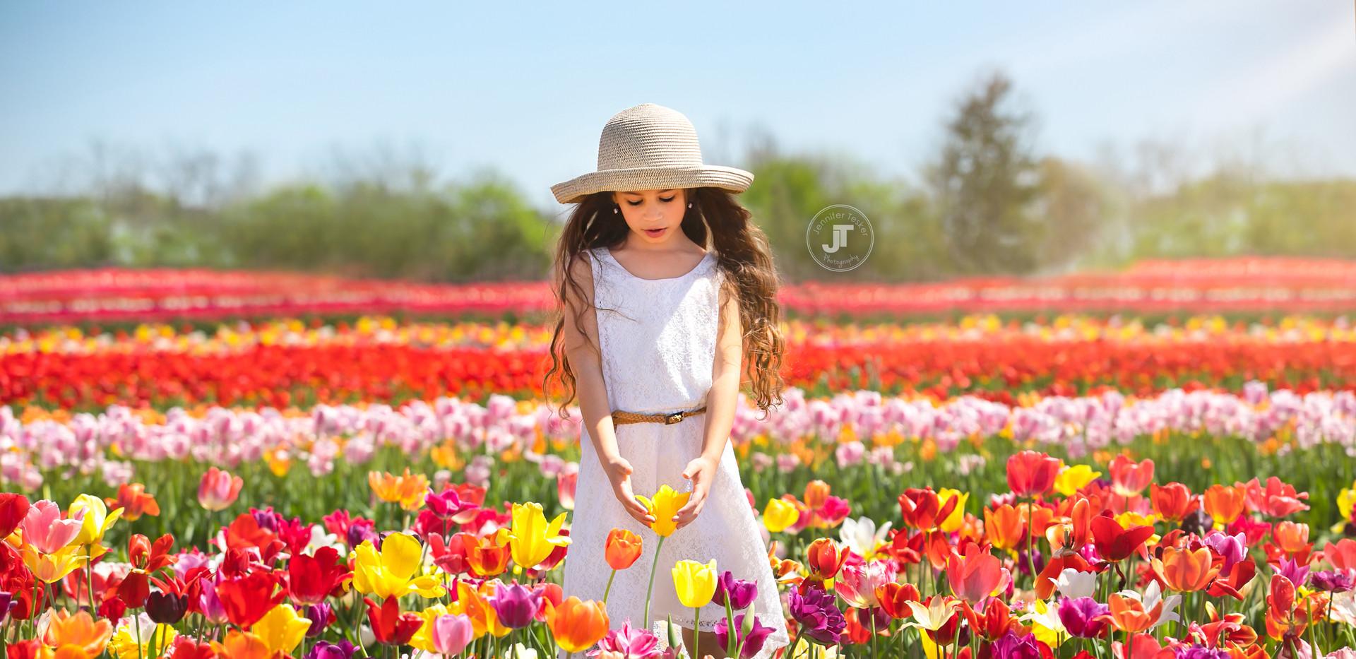 Tulip 2019 (1 of 2) copy.jpg