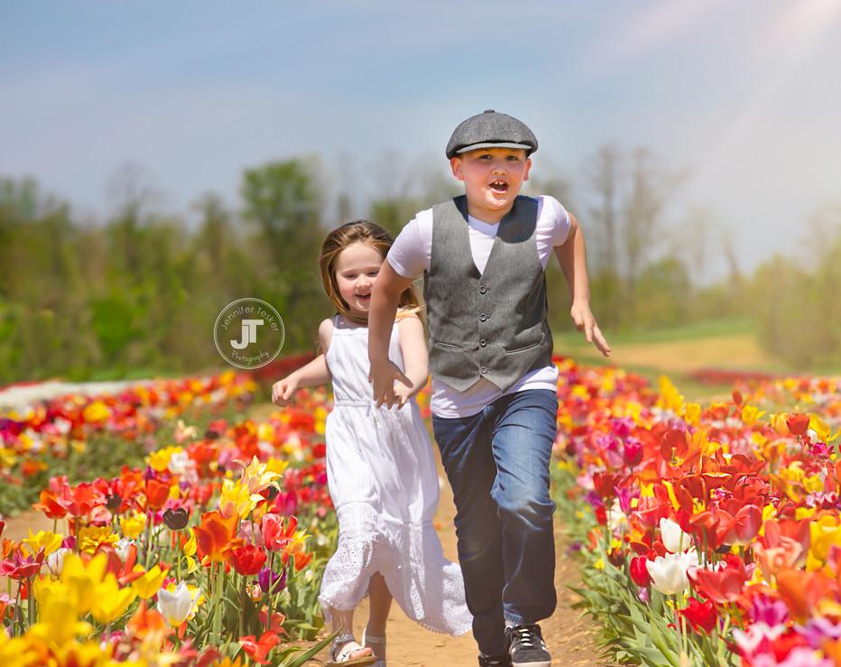 Tulips--7 copy.jpg