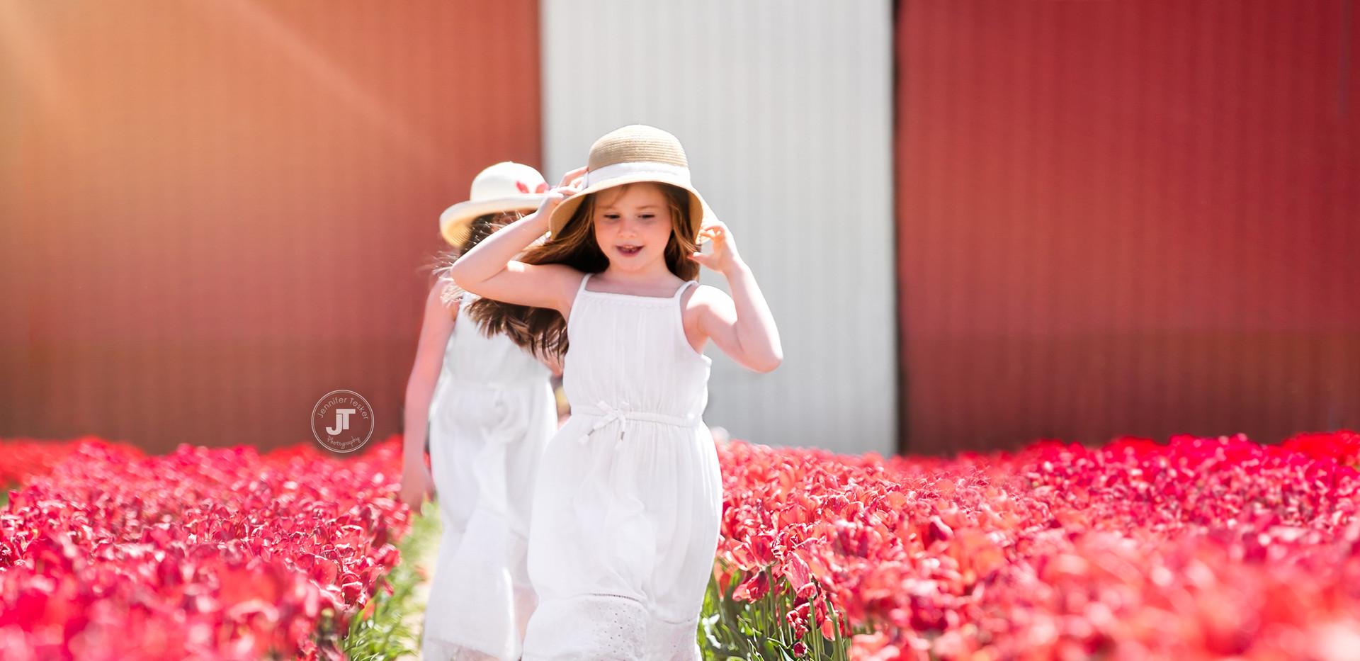 Tulips--11 copy.jpg