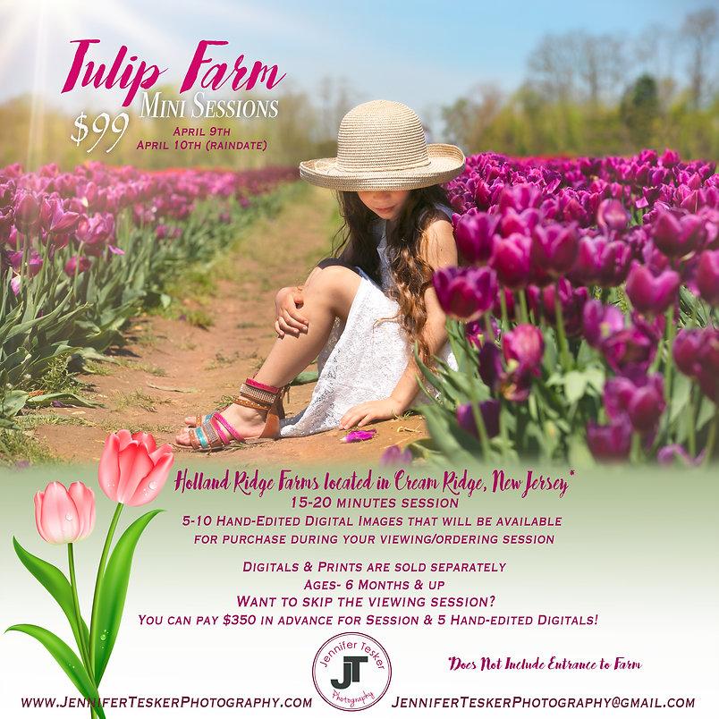 Tulip Minis 2020.jpg