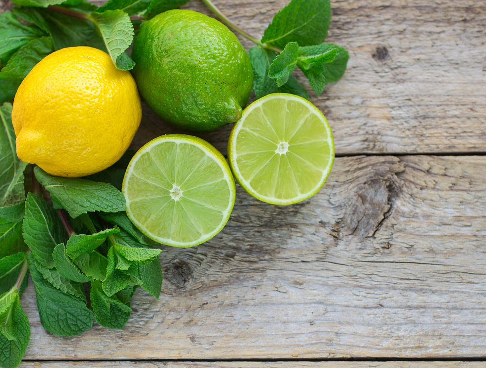 Lemon, lime and mint - juicy ripe citrus