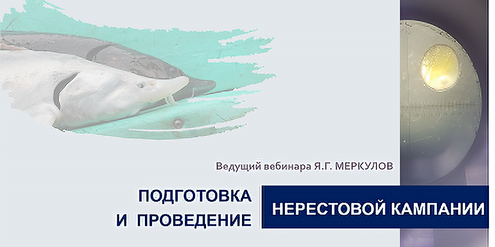 """Вебинар """"Подготовка и проведение нерестовой кампании"""""""