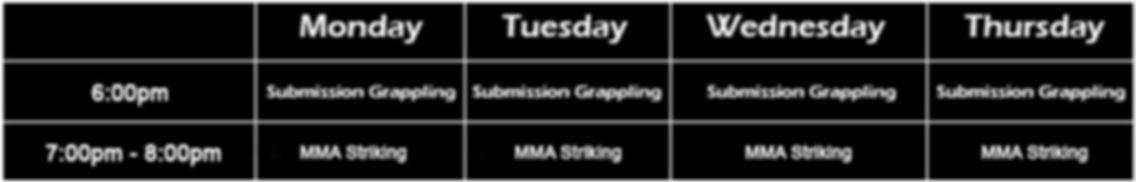 MMA new timetable.jpg