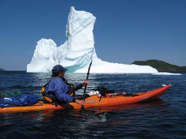 Coffee Cove iceberg guest.jpg