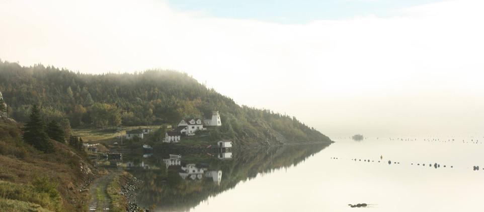 landscape shot.jpg