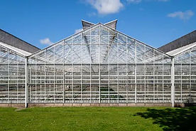 commercial-glass-greenhouses-westland-re