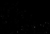 DeStadSpeelt_Logo_1.01_blackImage_3x.pn