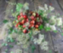 apple-arrangement.jpg