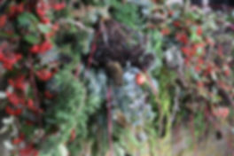 sylvan-garland.jpg