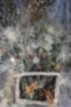 dried-display-2.jpg