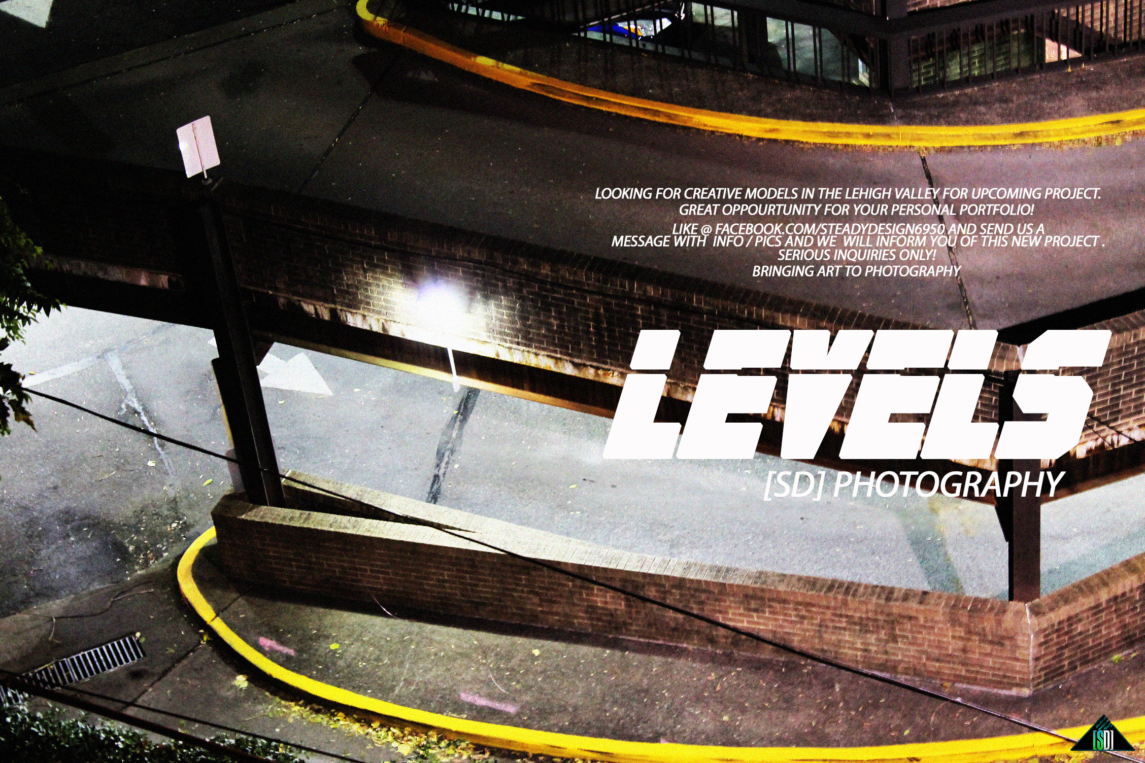 levels project promo
