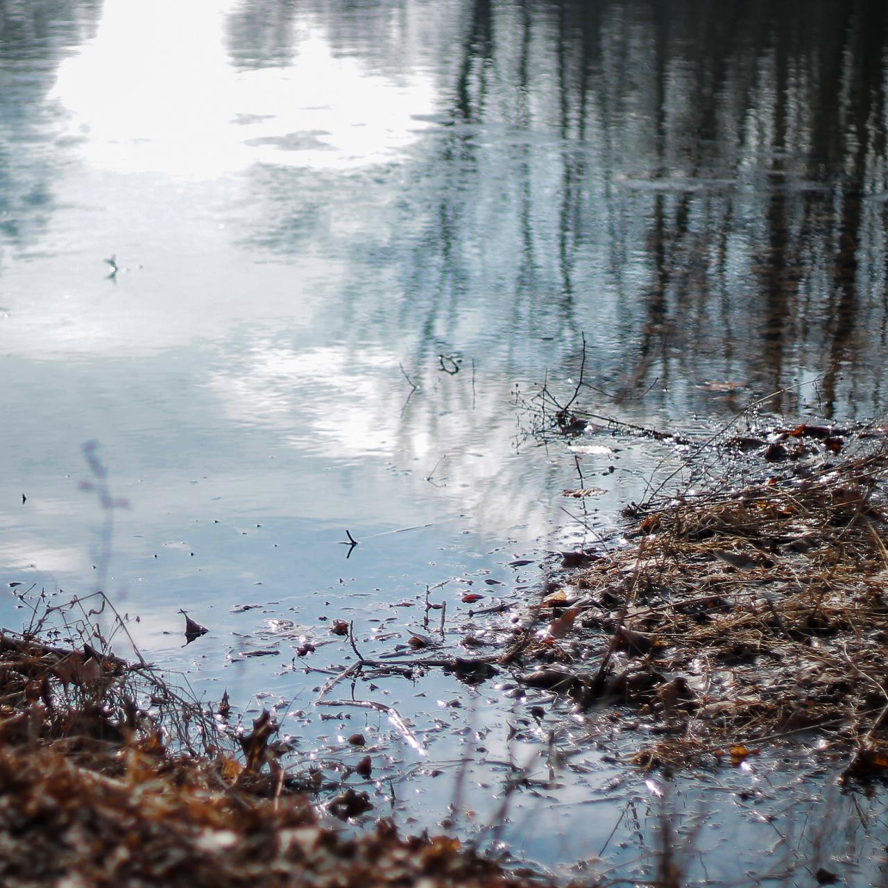 River Flows