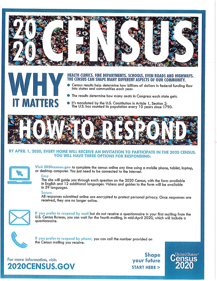 Census - Why It Matters_Page_1.jpg