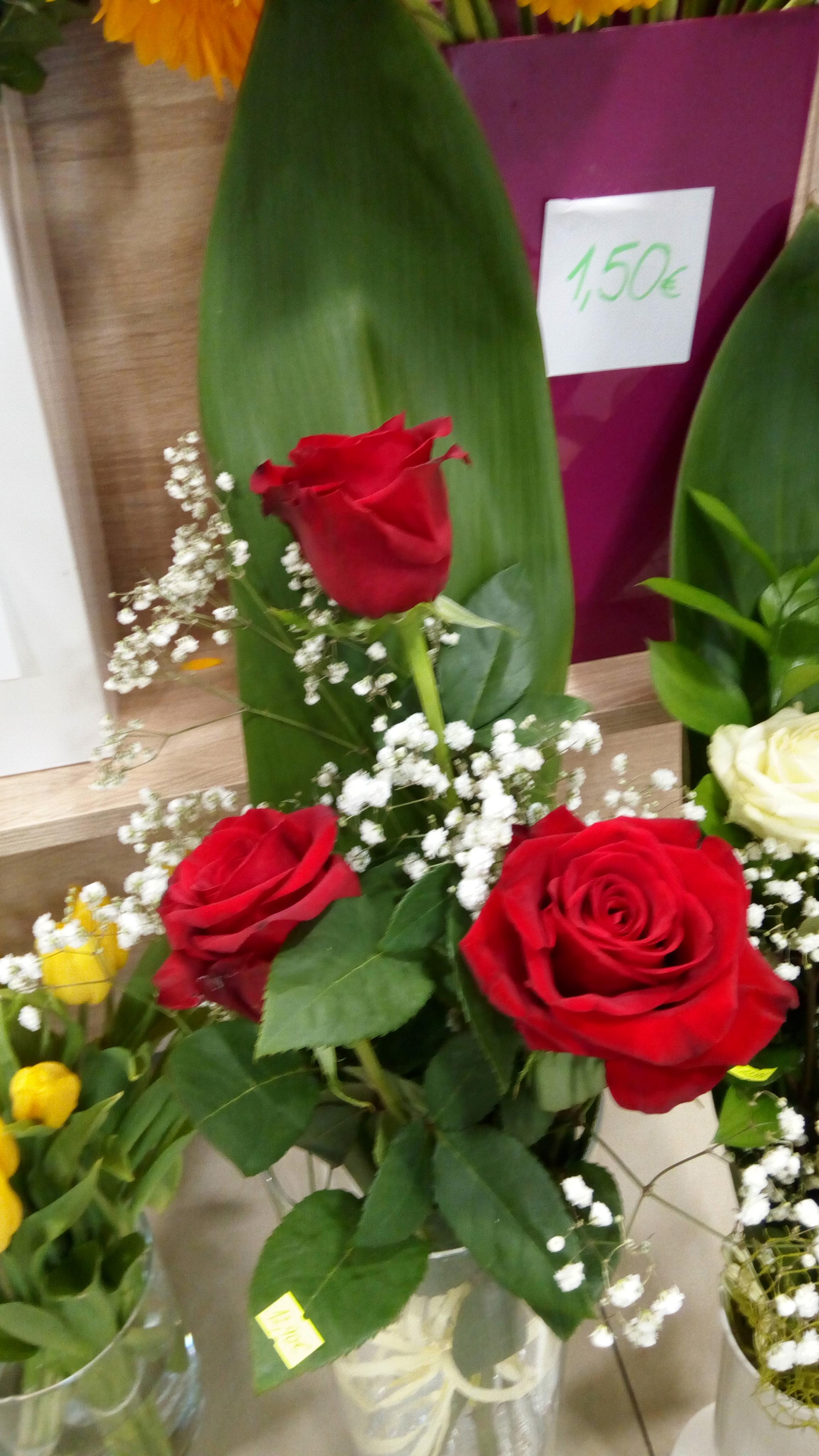 Kvetinárstvo DADA 9