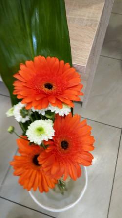 Kvetinárstvo DADA 23