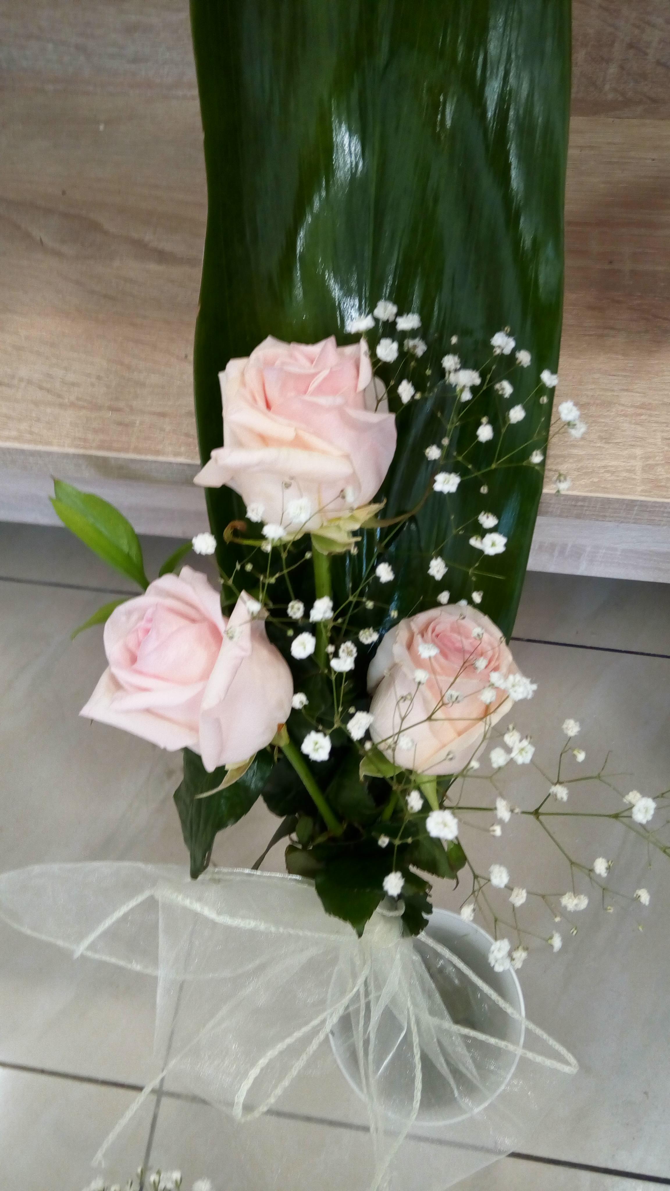 Kvetinárstvo DADA 24