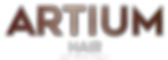 Artium hair logo copper.png