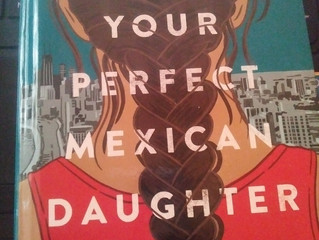 'I Am Not Your Perfect Mexican Daughter' Review: The Book with 3 stories