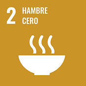 Sustainable_Development_Goal-es-16.jpg
