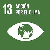 13. accion por el clima.png