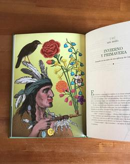 ilustración y texto