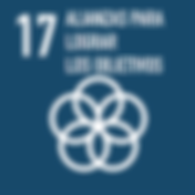 17. alianzas para lograr objetivos.png