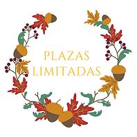 Copia_de_ESCUELA_DE_OTOÑO.png