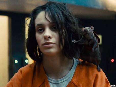 Daniela Melchior é a atriz mais popular do mundo por causa do Esquadrão Suicida