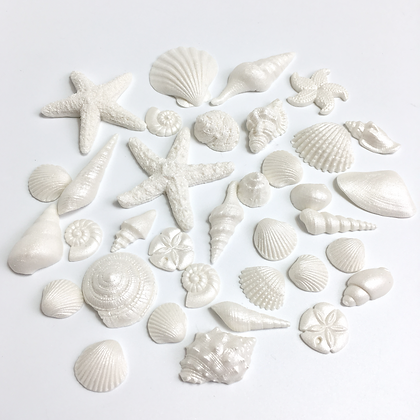 Sugar seashell pack - mini