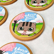 Spring Morty Cookies