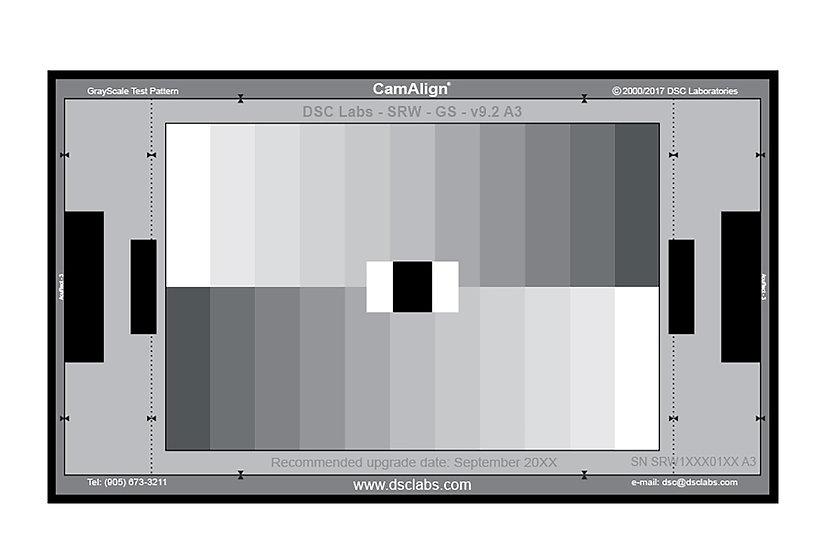DSC SRW-GS 11 Step Senior 灰階圖卡(24x14.7 吋)