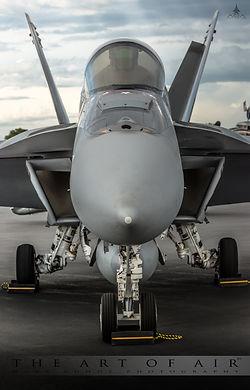 F18dforweb.jpg
